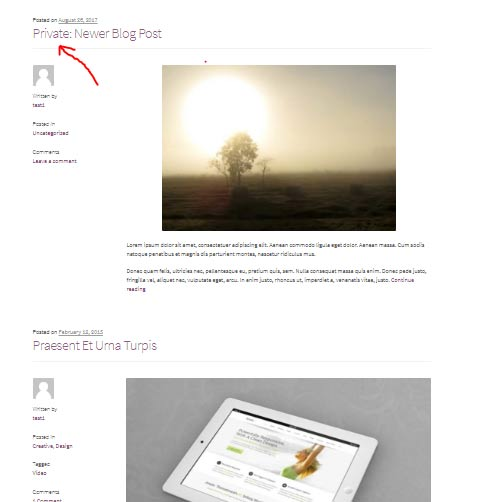 Preview the Post on Blog Page Before Publishing on WordPress